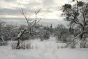 winterliche_Streuobstwiese